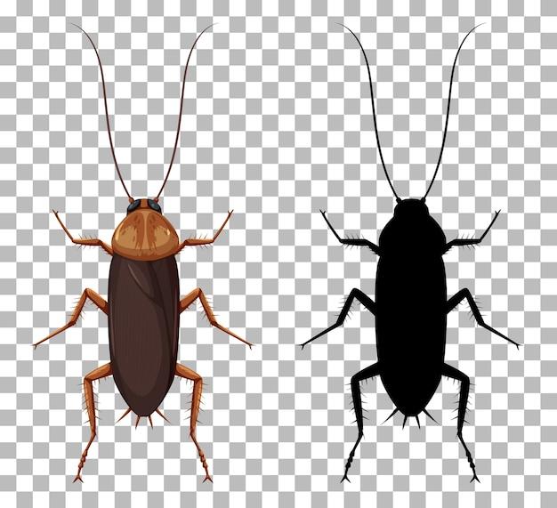 Kakerlake mit ihrer silhouette lokalisiert auf transparentem hintergrund