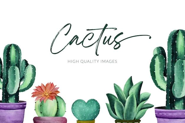 Kaktus-aquarellillustration