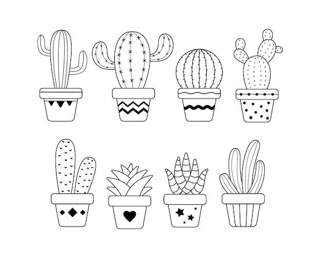 Kaktus in topfpflanze.