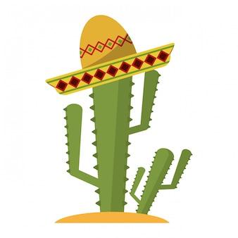 Kaktus mit mexikanischem hut