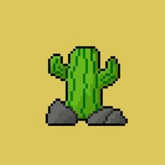 Kaktus mit pixel-art-stil