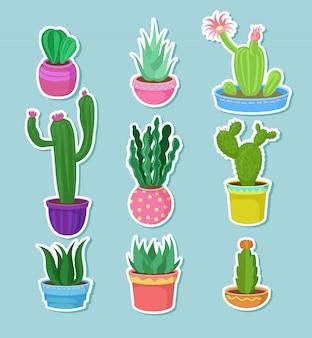 Kaktusheimpflanzen in töpfen mit blumen gesetzt, vielzahl von dekorativen kakteenaufklebern illustrationen