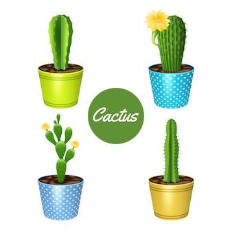 Kaktuspflanzen in den dekorativen ikonen der blumentöpfe eingestellt