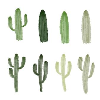 Kaktussammlungen vektordesign