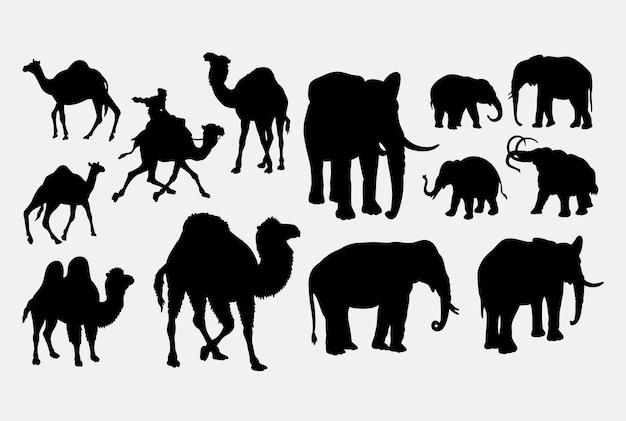 Kamel und elefant tier silhouette