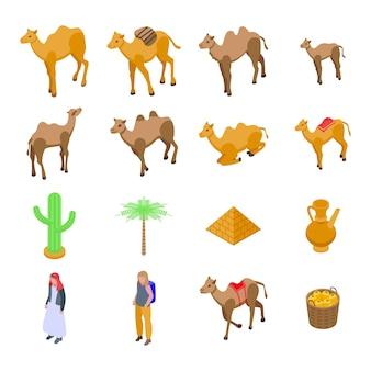 Kamelikonen eingestellt. isometrischer satz kamelvektorikonen für das webdesign lokalisiert auf weißem hintergrund