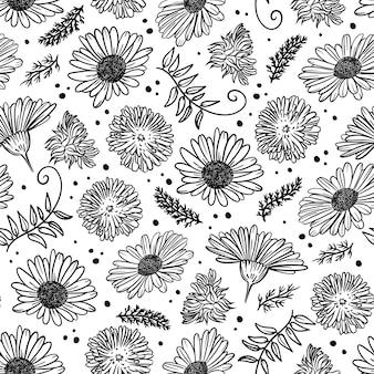 Kamille und dandelion monochromes blumenskizze nahtloses muster