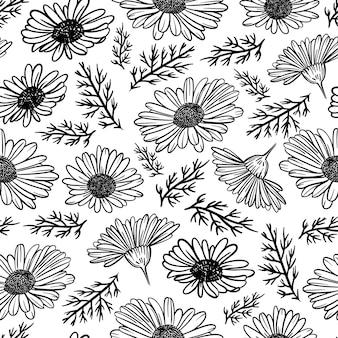 Kamomile monochrome wildblumen mit gras und knospe in skizze cartoon nahtloses muster