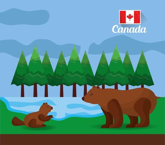 Kanadischer bär und biber im waldsee