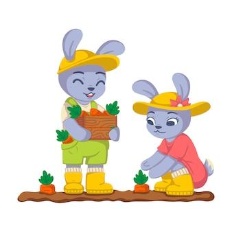 Kaninchen ernten im garten karotten. hasenarbeit auf dem kailyard. landwirtschaft, gartenarbeit. kinderillustration lokalisiert auf weißem hintergrund.