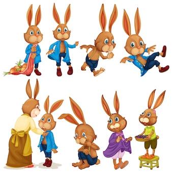Kaninchen gesetzt