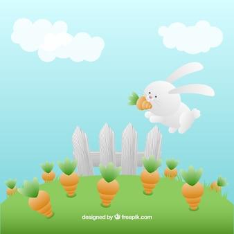Kaninchen im gemüsegarten