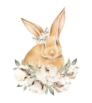 Kaninchen mit baumwolle