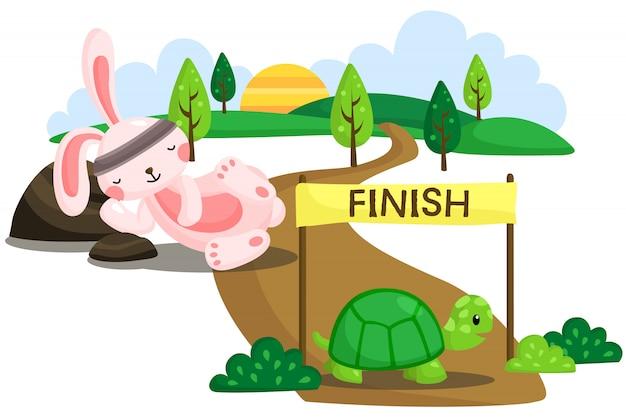 Kaninchen und schildkröte