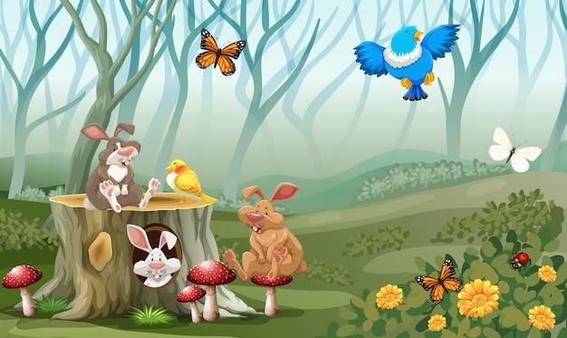 Kaninchen und vögel, die im wald leben