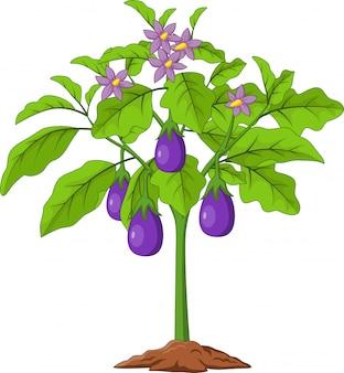 Karikatur-auberginen lokalisiert auf weiß