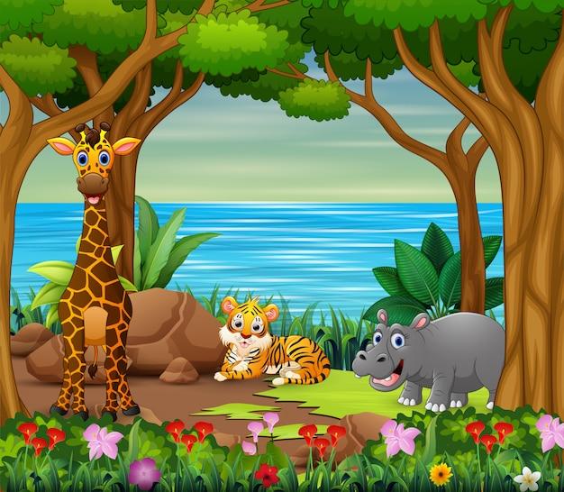 Karikatur der wilden tiere, die im schönen wald lebt