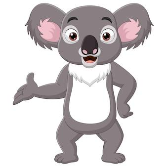 Karikatur glücklicher koala, der auf weißem hintergrund präsentiert
