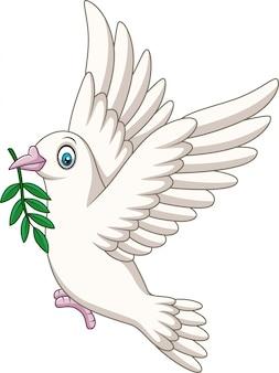 Karikatur-taubenvogellogo für friedenskonzept und hochzeit entwerfen