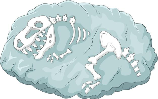 Karikatur tyrannosaurus rex fossil