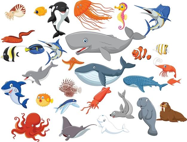 Karikatur von verschiedenen gesichtsausdrücken
