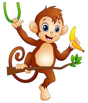 Karikaturaffe auf einem niederlassungsbaum und einer banane halten