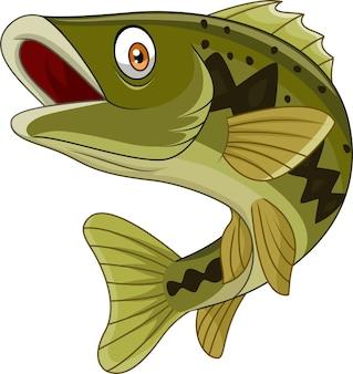 Karikaturbassfische lokalisiert auf weißem hintergrund