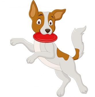 Karikaturhund, der flugscheibe spielt