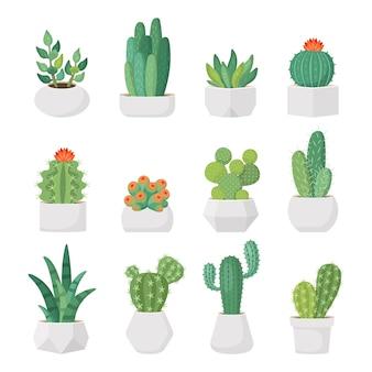 Karikaturkaktus und -succulents im topfvektorsatz