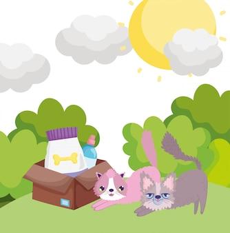 Karikaturkatzen mit kastenfutter in den grashaustieren