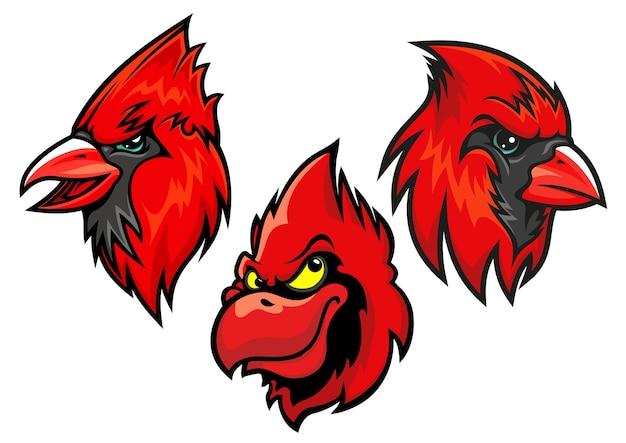 Karikaturmaskottchen von kardinalvogelköpfen in verschiedenen verkürzungen für sportverein- oder teamdesign