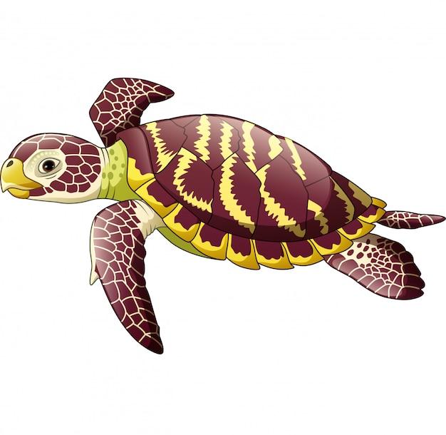 Karikaturmeeresschildkröte lokalisiert auf weißem hintergrund