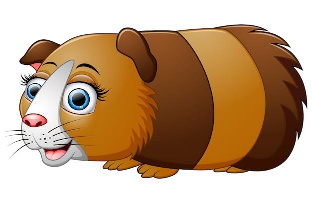 Karikaturmeerschweinchen lokalisiert auf weißem hintergrund
