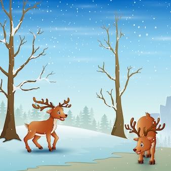 Karikaturren, das auf dem schneebedeckten wald spielt