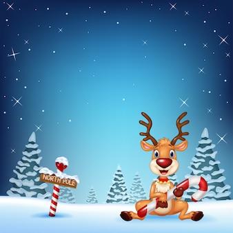 Karikaturrotwild, die weihnachtssüßigkeit mit winterhintergrund halten