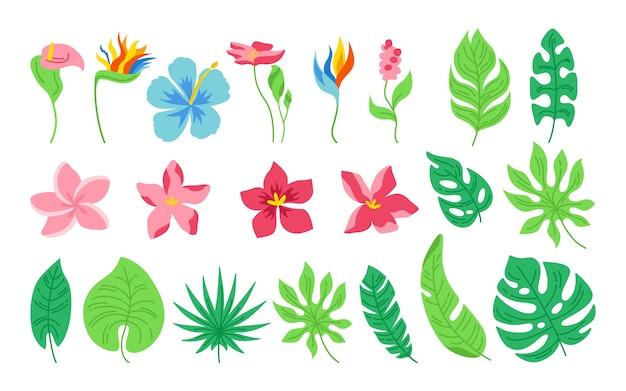 Karikatursatz der exotischen blätter und der blumen. tropische abstrakte flache flache pflanzen. sammlung von monstera, palmen und wildblumen. hawaiianischer handgezeichneter grüner dschungel. auf weißem hintergrund