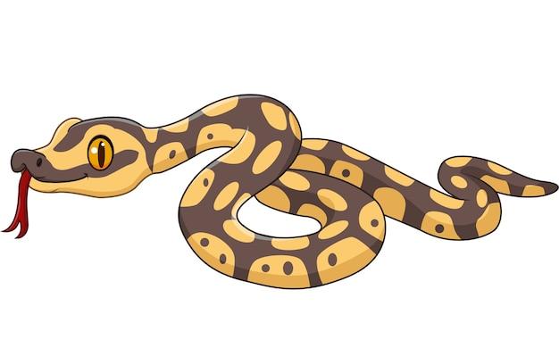 Karikaturschlangencharakter lokalisiert auf weißem hintergrund