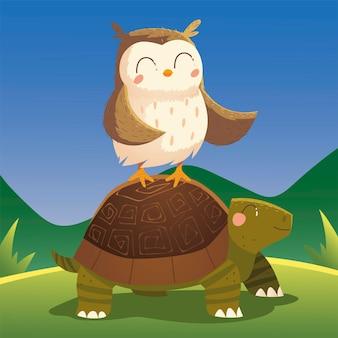Karikaturtiere eule auf schildkröte in der grasnaturillustration
