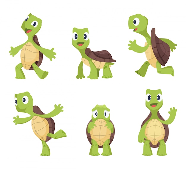 Karikaturvektorschildkröte in den verschiedenen aktionshaltungen