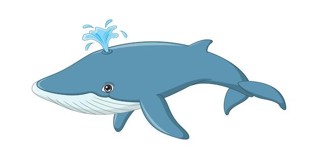 Karikaturwal lokalisiert auf weiß