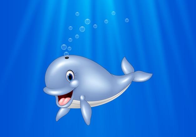 Karikaturwalschwimmen im ozean