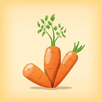 Karottengesundes gemüse mit realistischer farbe