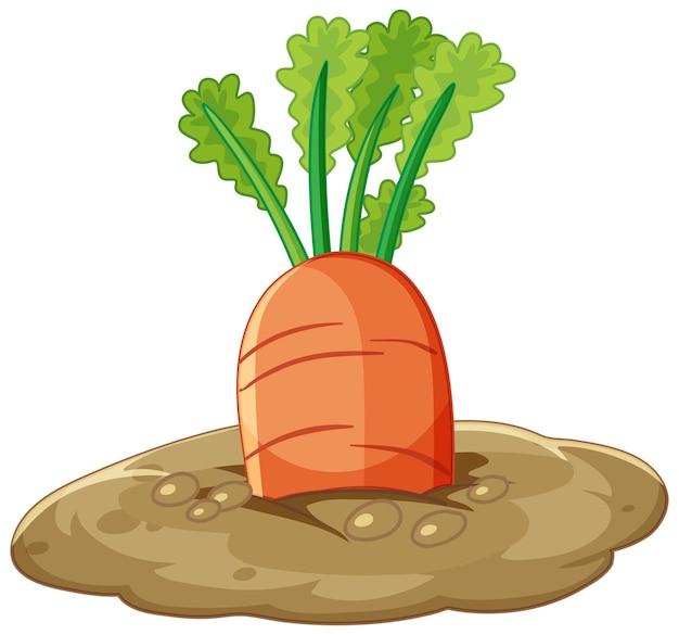 Karottenwurzel im boden-cartoon-stil isoliert