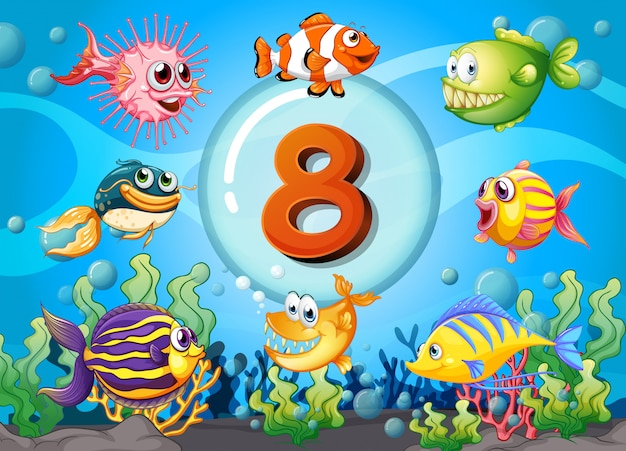 Karteikarte nummer acht mit 8 fischen unter wasser