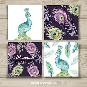 Kartensammlung mit kreativen pfauentwürfen