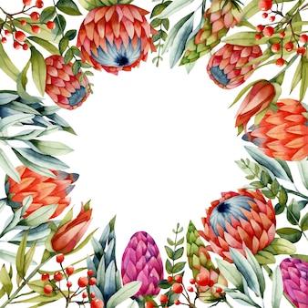 Kartenschablone mit roten proteablumen des aquarells