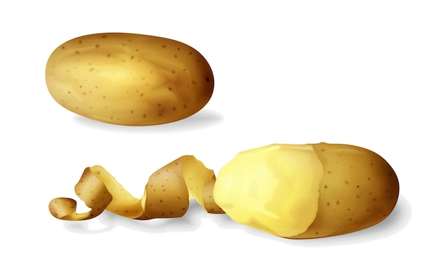 Kartoffel schälte 3d des lokalisierten realistischen kartoffelgemüses ganz und halb abgezogen
