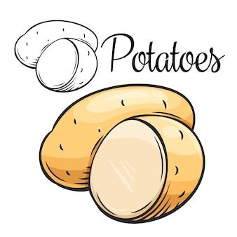 Kartoffel zeichnungsikone