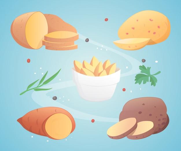 Kartoffelsatzvektorillustration
