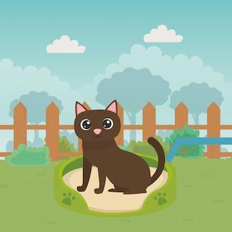 Katze der karikatur im bett